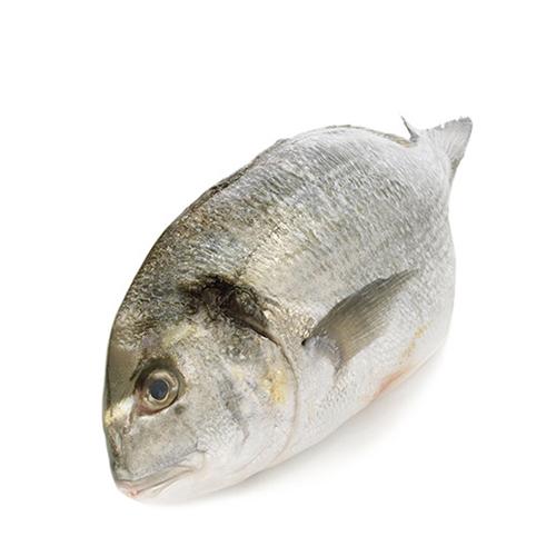 Les poissons du banc des saveurs - La Dorade