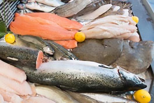 Les poissons du banc des saveurs
